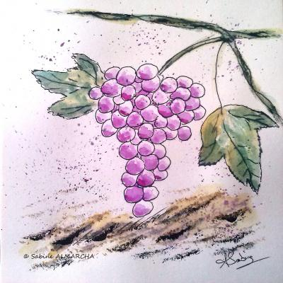 Le raisin. 6